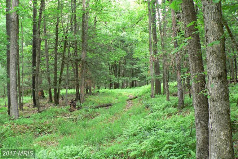 26.89 acres Brandywine, WV