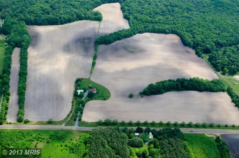 98 acres in Marydel, Maryland