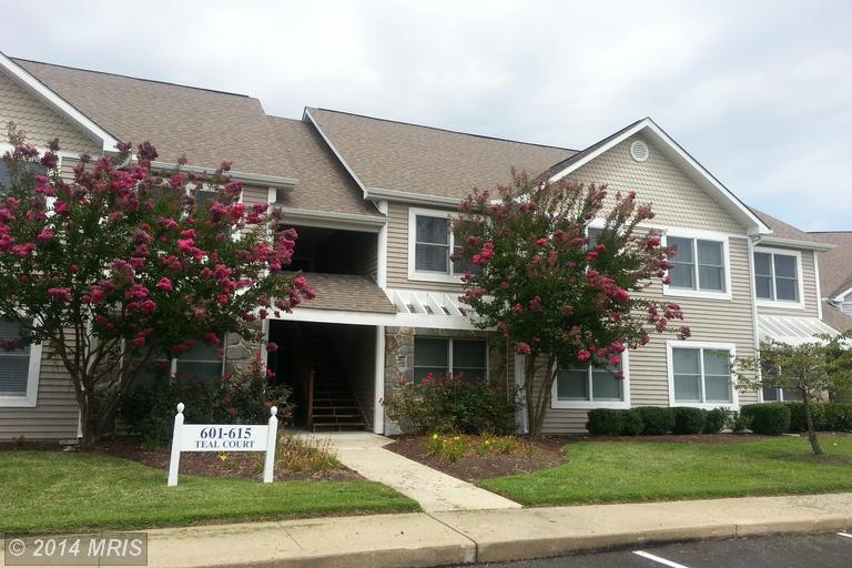 613 Teal Ct # G, Chester, MD 21619