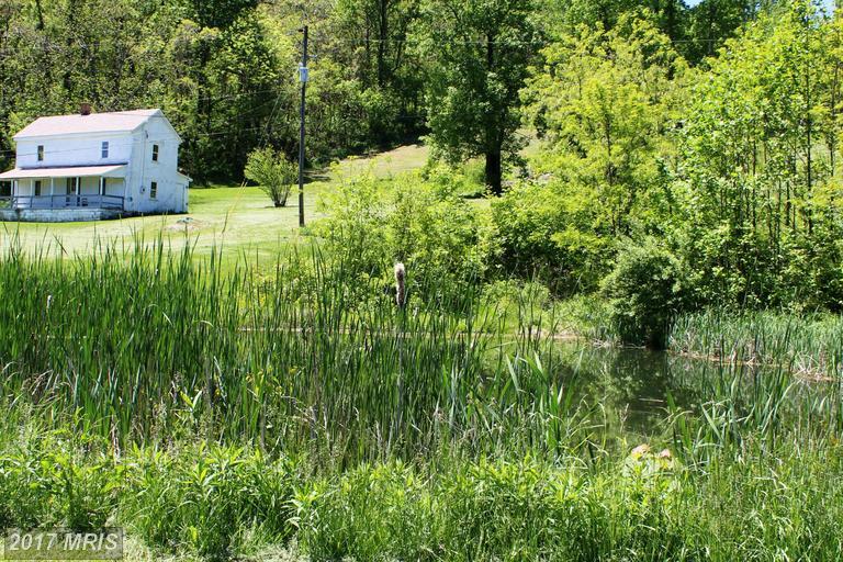 Farm House, Detached - CHESTER GAP, VA (photo 4)