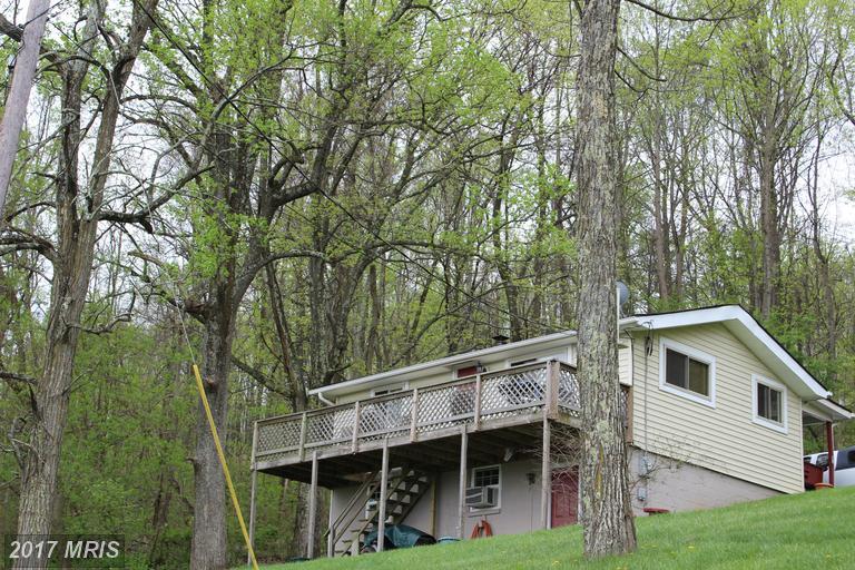 Cabin, Detached - CHESTER GAP, VA (photo 2)