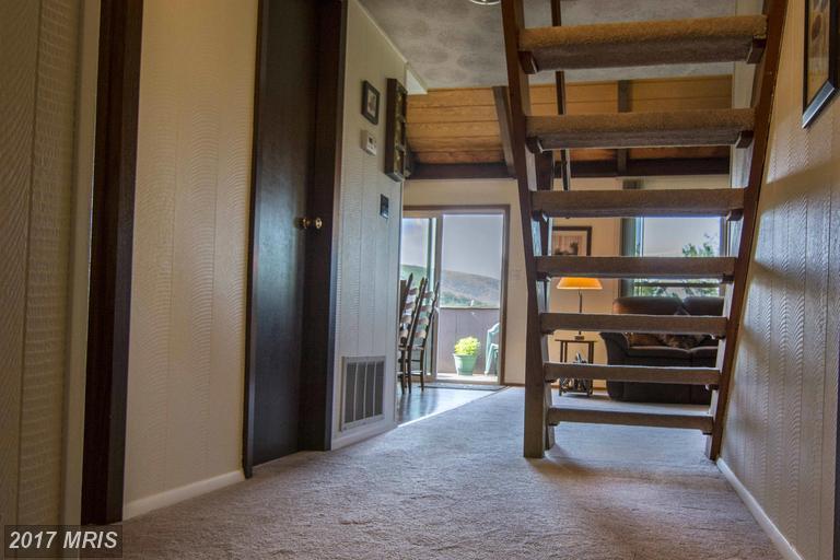 Chalet, Condo,Garden 1-4 Floors - BASYE, VA (photo 3)