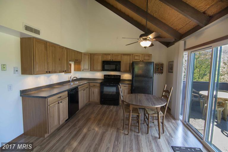 Chalet, Condo,Garden 1-4 Floors - BASYE, VA (photo 4)