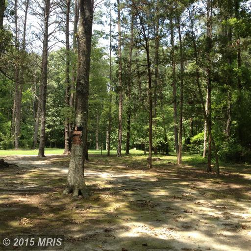 3 acres by Partlow, Virginia for sale