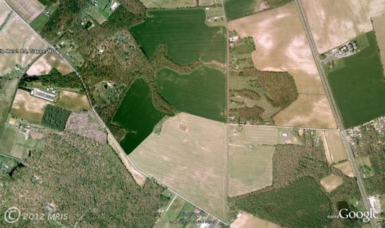 Image of Acreage for Sale near Trappe, Maryland, in Talbot county: 175.06 acres