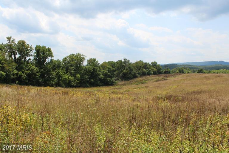Image of Acreage for Sale near Big Pool, Maryland, in Washington county: 23.38 acres