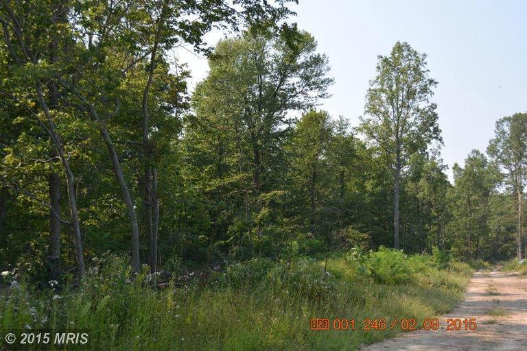Image of Acreage for Sale near Big Pool, Maryland, in Washington county: 10.64 acres