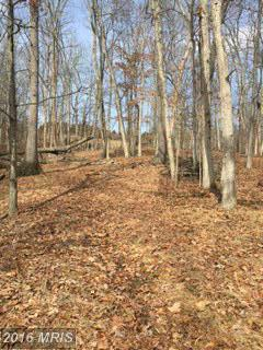 Image of Acreage for Sale near Big Pool, Maryland, in Washington County: 10.2 acres