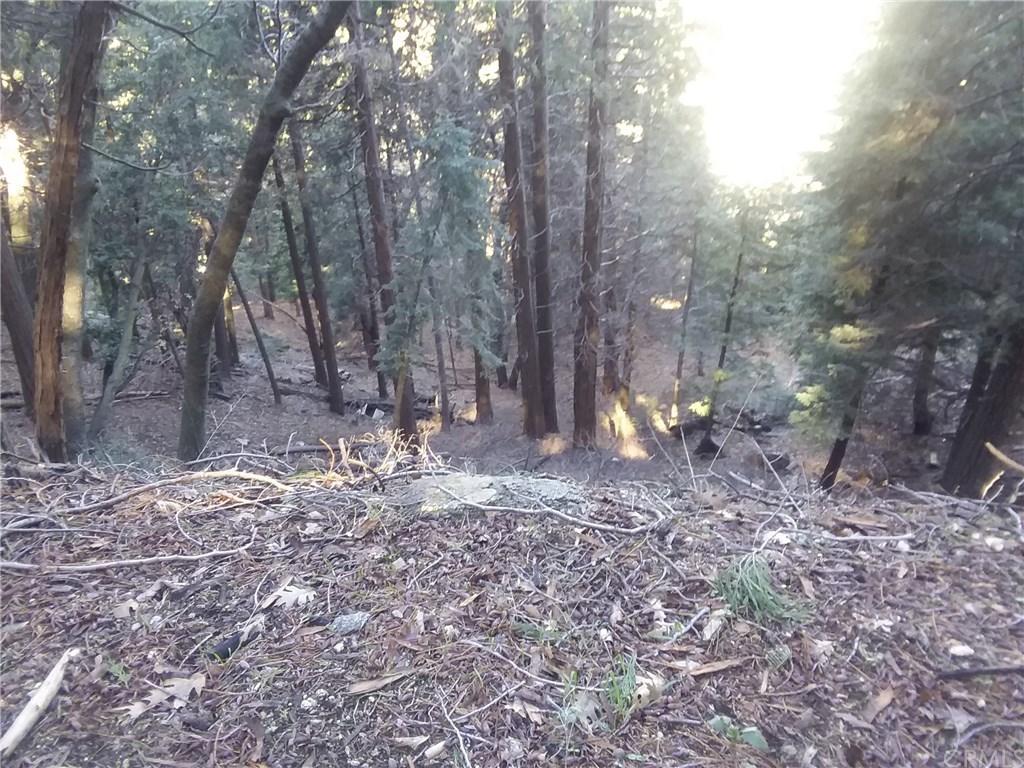 0 El valle Cedarpines Park, CA 92322