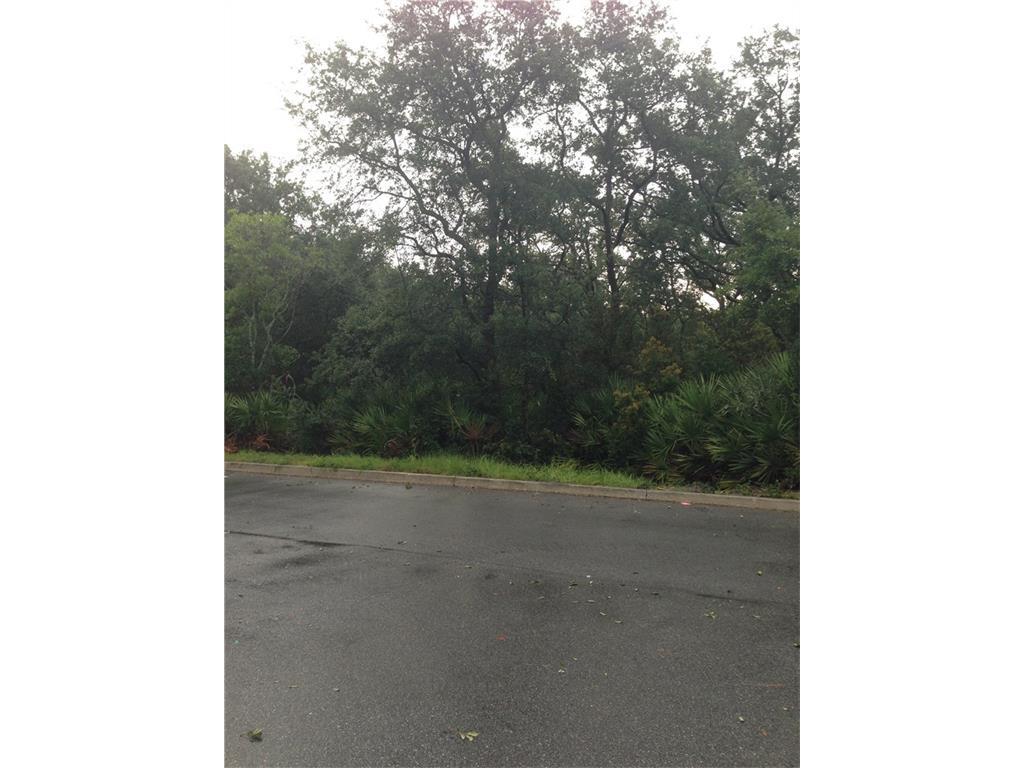 Lot 4 Northpark Dr, Fernandina Beach, FL 32034