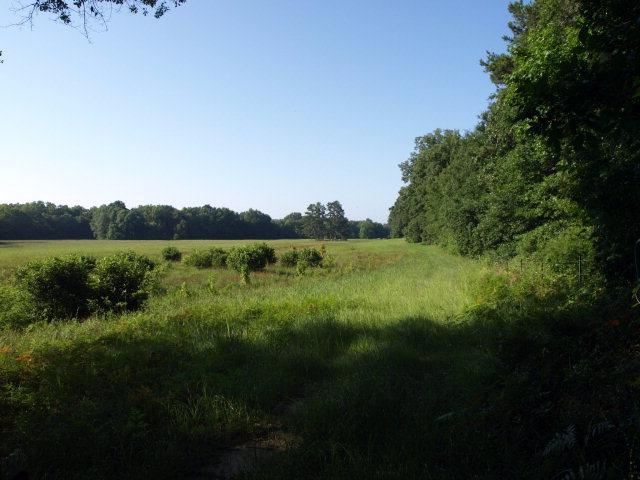 330 acres Oxford, MS