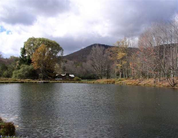 Land for Sale, ListingId:31520656, location: 0 Glady Lodge Glady 26268