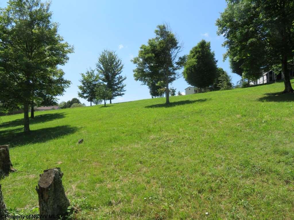 primary photo for Lot 87 Doe Lane, Buckhannon, WV 26201, US