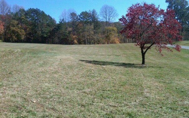 TR 4 THE ARBOR Lot Tract 4, Blairsville in Union County County, GA 30512 Home for Sale