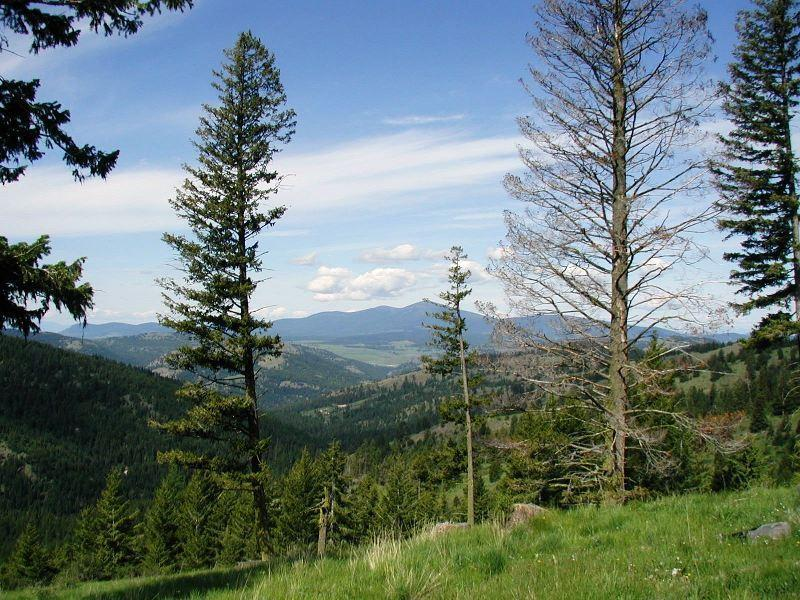 Image of Acreage for Sale near Republic, Washington, in Ferry County: 152.57 acres