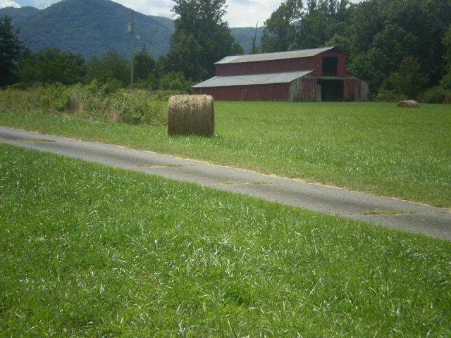 Real Estate for Sale, ListingId: 34409945, Whittier,NC28789
