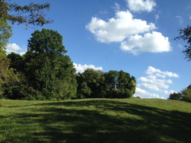 135 acres Burlington, KY