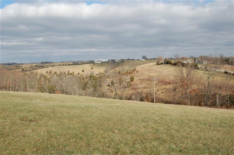 Image of Acreage for Sale near Falmouth, Kentucky, in Pendleton county: 75.00 acres