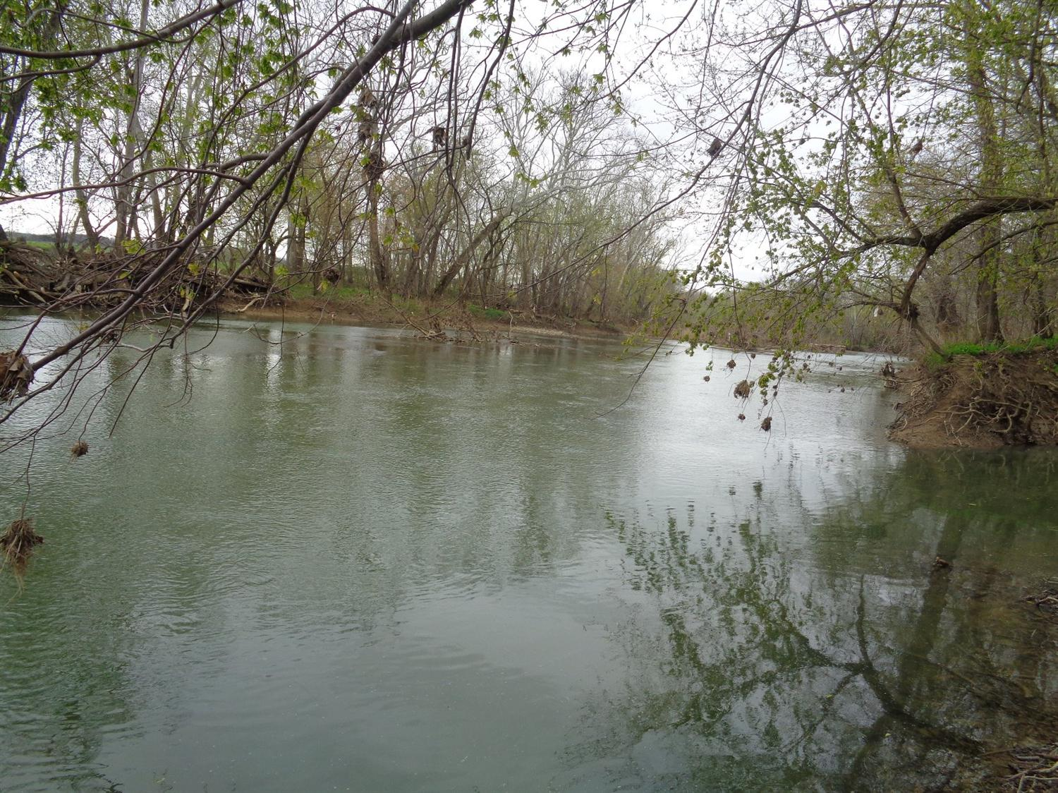 Image of Acreage for Sale near Falmouth, Kentucky, in Pendleton county: 92.00 acres