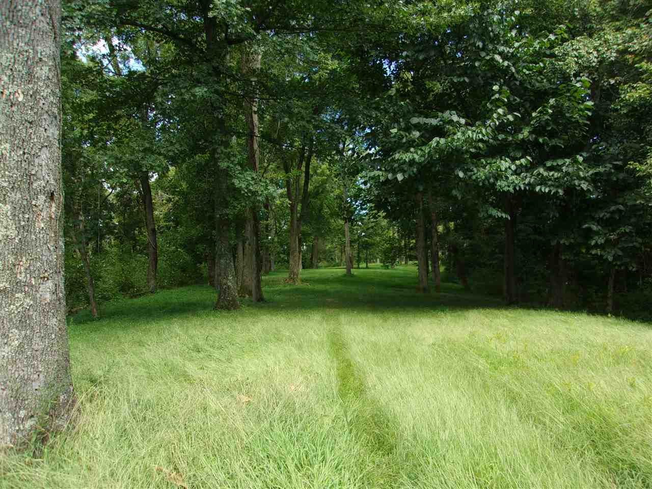 30 Acres Dover Road Augusta, KY 41002