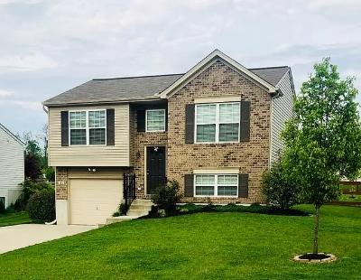 181 Pitty Pat Lane, Walton, Kentucky