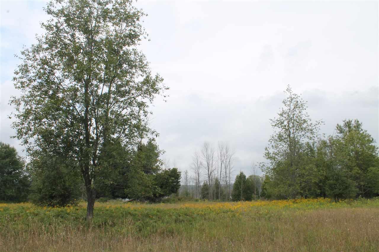6 Amon Meadows Lot # 6 Alanson, MI 49706