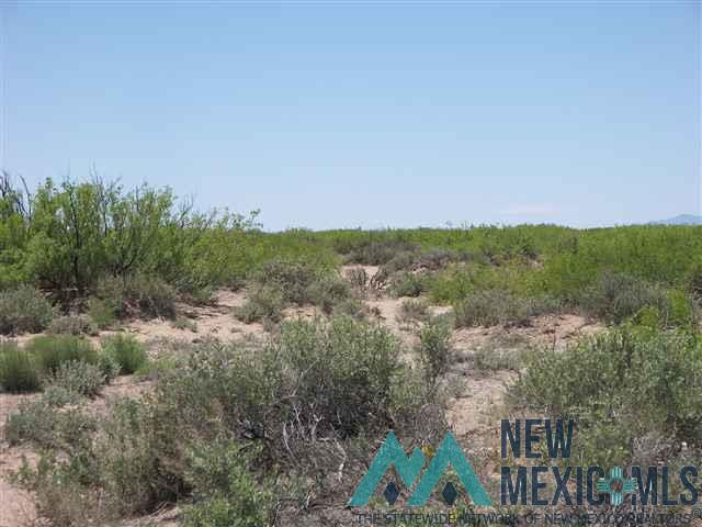 primary photo for SVR Unit 16 Bk 8 T 18-25 Mapache Rd SE, Deming, NM 88030, US