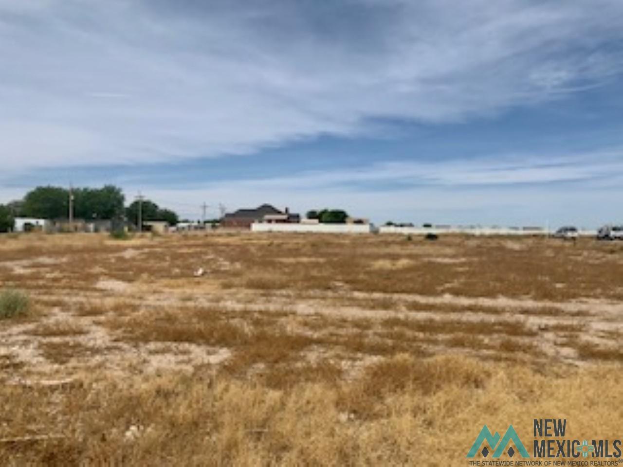 507 N 26th St. Artesia, NM 88210