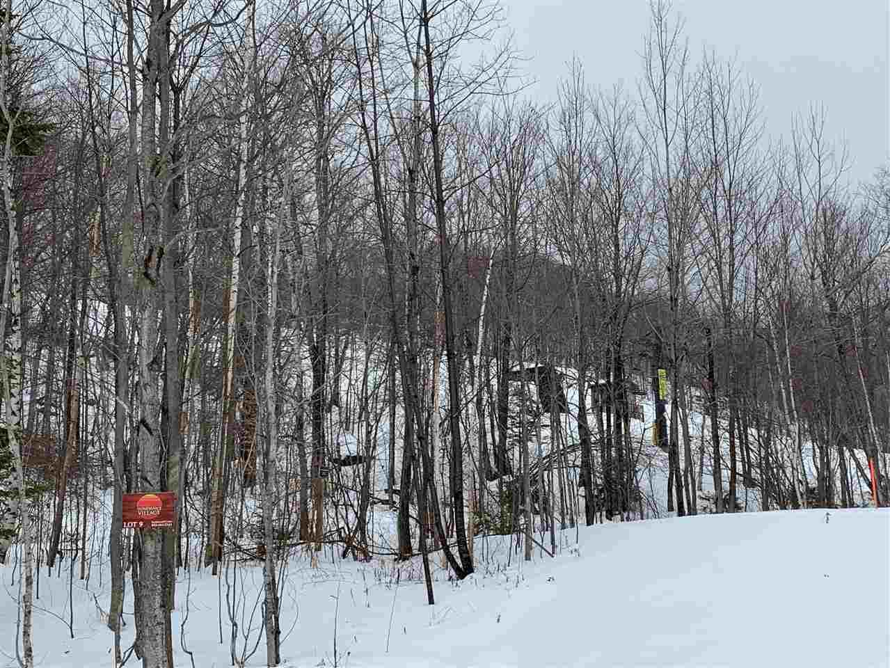9 Sundance Village Loop, Dover, Vermont