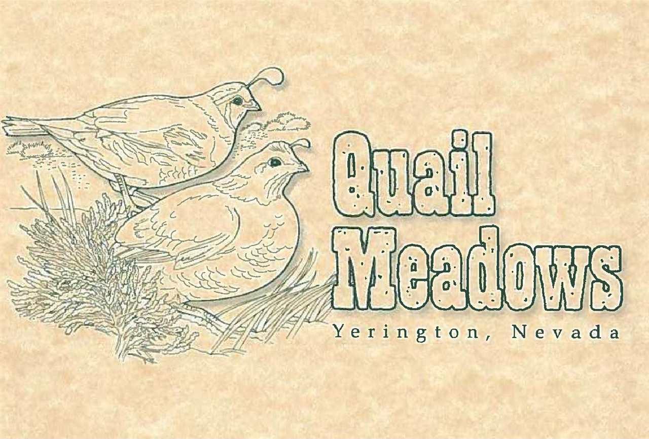 221 Quail Run Drive Yerington, NV 89447