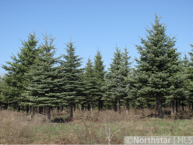 1634 Majestic Pines Trl, Afton, MN 55001