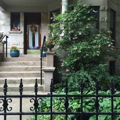 3815 N Pine Grove Ave, Chicago, IL 60613