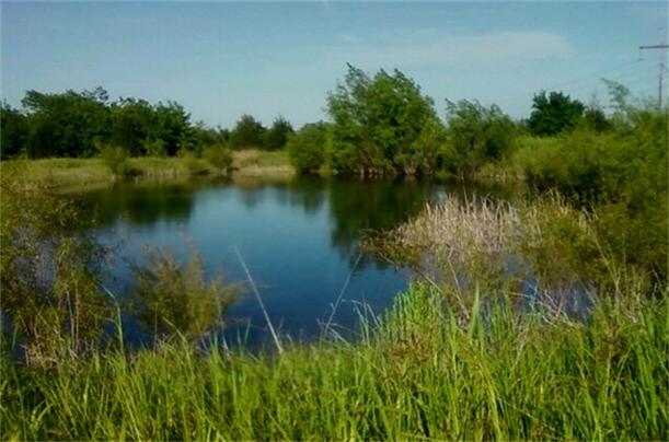Real Estate for Sale, ListingId: 22892950, Farmersville,TX75442