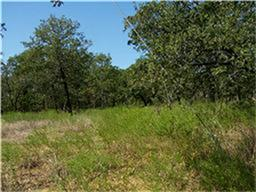 97 acres by Chico, Texas for sale