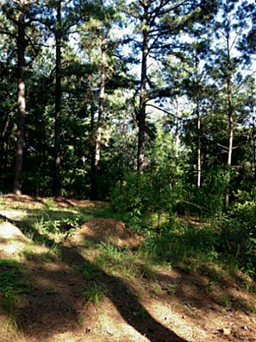 22 acres in Broken Bow, Oklahoma