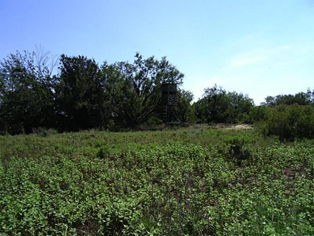 Real Estate for Sale, ListingId: 25043602, Breckenridge,TX76424