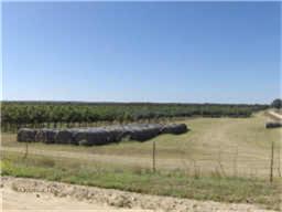 2909 County Road 304 Comanche, TX 76442
