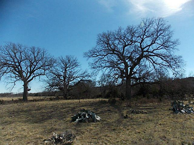 46 acres Glen Rose, TX