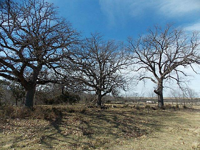 27 acres Glen Rose, TX