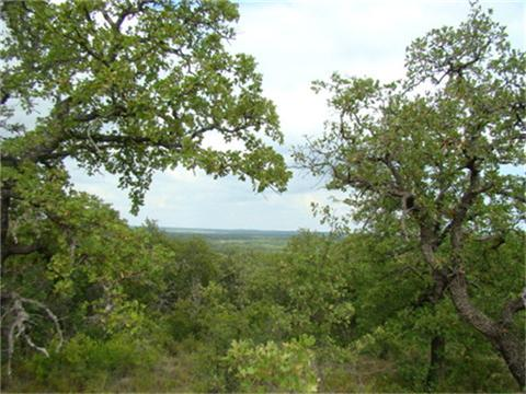 525.01 acres by Eastland, Texas for sale