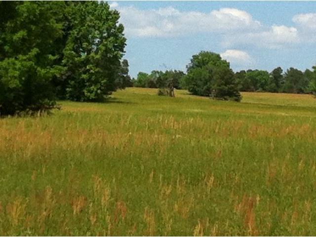 Real Estate for Sale, ListingId: 28529661, Douglassville,TX75560