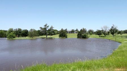 Real Estate for Sale, ListingId: 28794781, Denison,TX75021