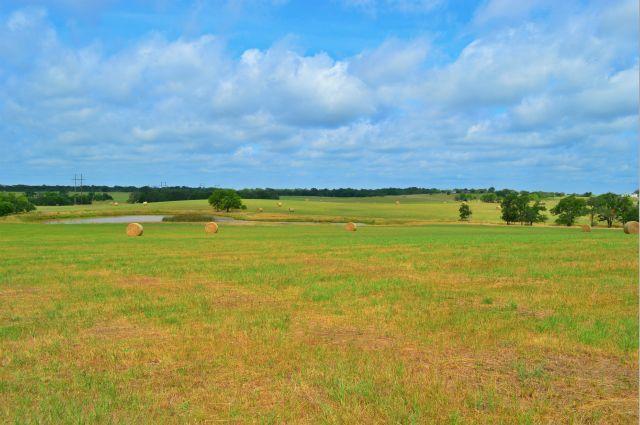 289.78 acres Savoy, TX