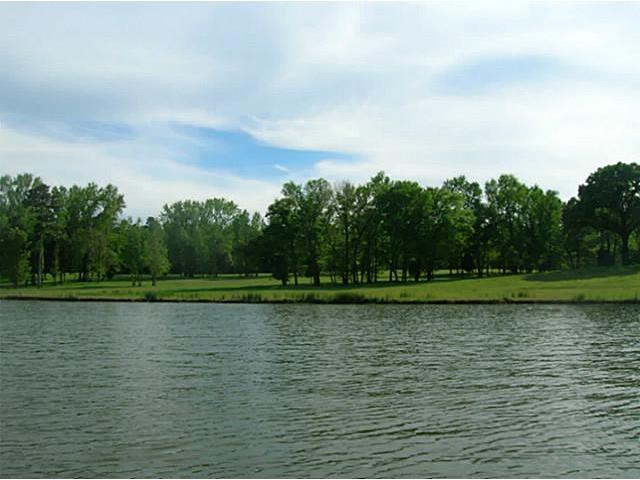 Real Estate for Sale, ListingId: 29254625, Mt Vernon,TX75457