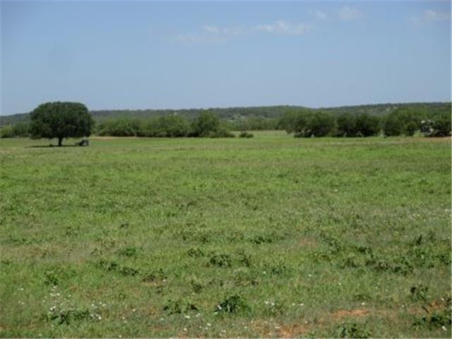 Real Estate for Sale, ListingId: 29809307, Millsap,TX76066