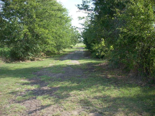 County Road 3558, Sulphur Bluff, TX 75481