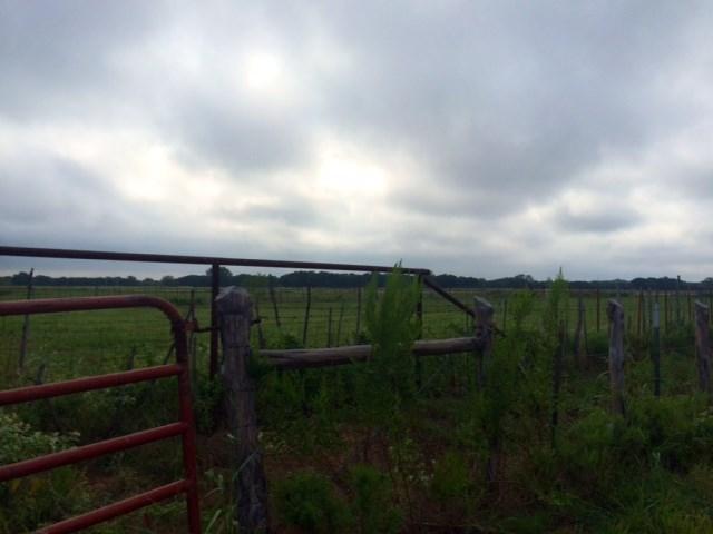 360 NW County Road 3150, Dawson, TX 76639