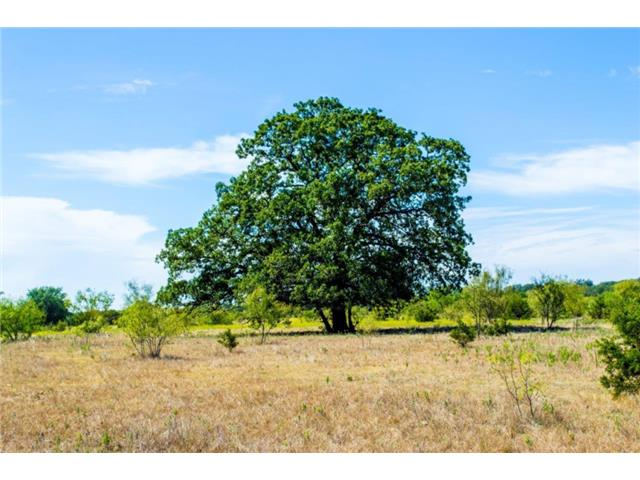141 acres by Lipan, Texas for sale