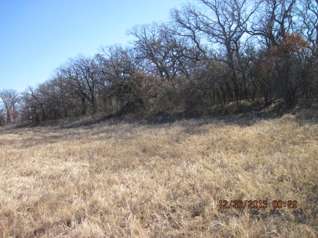 Real Estate for Sale, ListingId: 30256285, Chico,TX76431