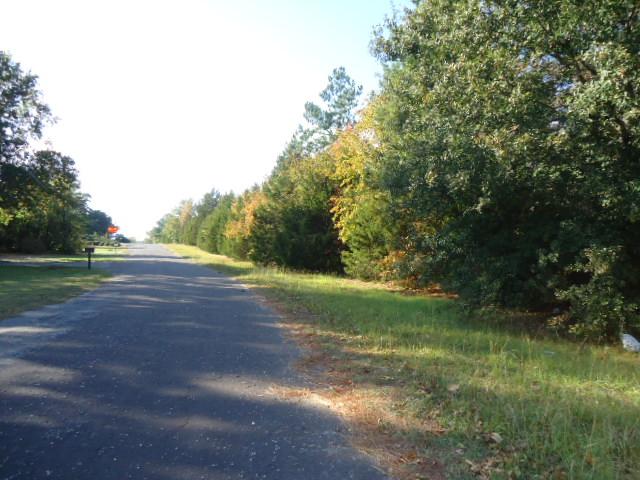Real Estate for Sale, ListingId: 30638039, Winnsboro,TX75494
